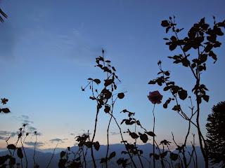 sonnenuntergang-sommer-lago-maggiore