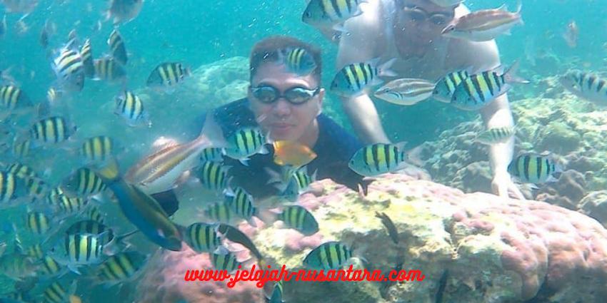 paket wisata private trip pulau harapan 3 hari 2 malam kepulauan seribu