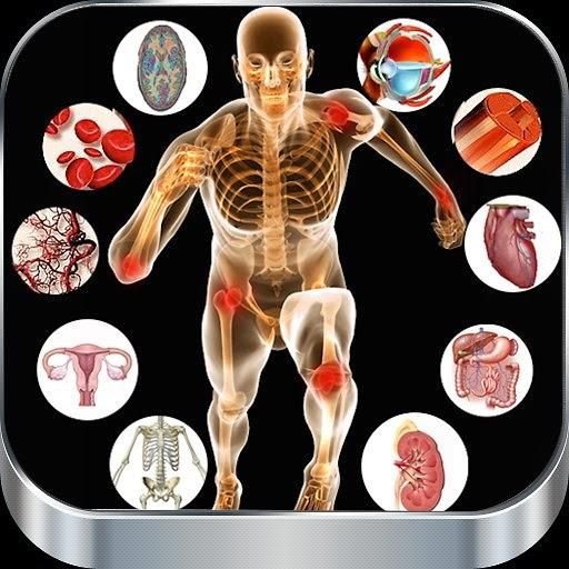 physiologie cardiaque cours medecine pdf