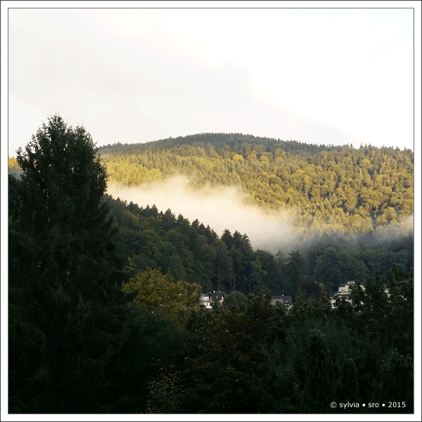 herbstnebel © sylvia • sro • 2015