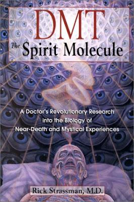dmt la molecola dello spirito  DMT: la molecola dello spirito? | Mondo News