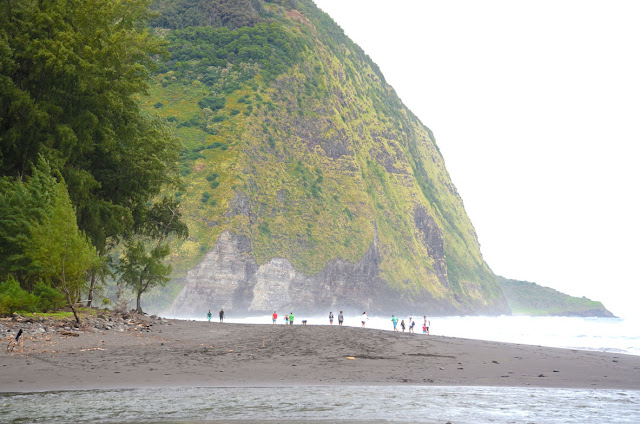 Waipio Beach, Big Island, Hawaii