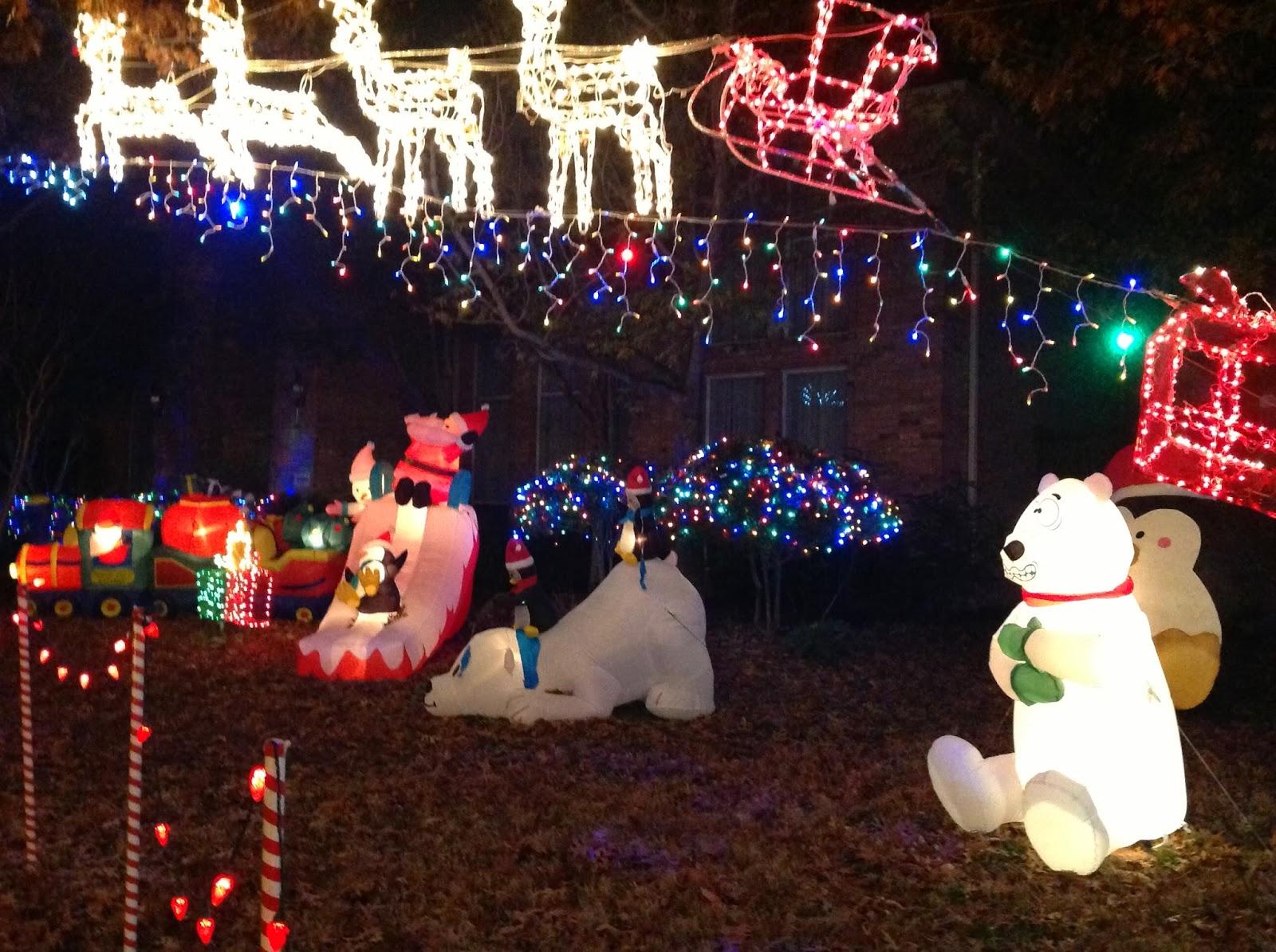 Family Adventures: Christmas Lights