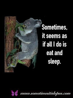 Image: koala chewing gum leaves.  Text: Sometimes, it seems as if all I do is sleep and eat.
