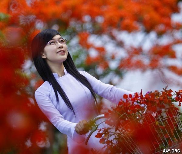 [HAY] Thơ Tháng 6 mùa yêu, Thơ Tháng Sáu hoài niệm đặc sắc nhất