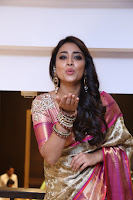 Actress Shriya Saran Stills in Saree at VRK Silks Launches at Himayat Nagar  0002.JPG