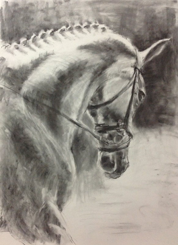 Shadow Walker, charcoal drawing of horse, equestrian art, equine art.