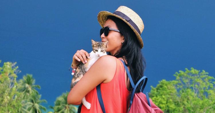 10 Arti Mimpi Di Cakar Kucing Menurut Primbon Jawa