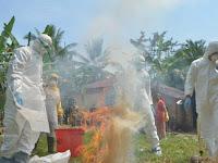Turis Cina Tanam Cabai Mengandung Bakteri, Wakil Ketua DPR: Ini Perang Biokimia