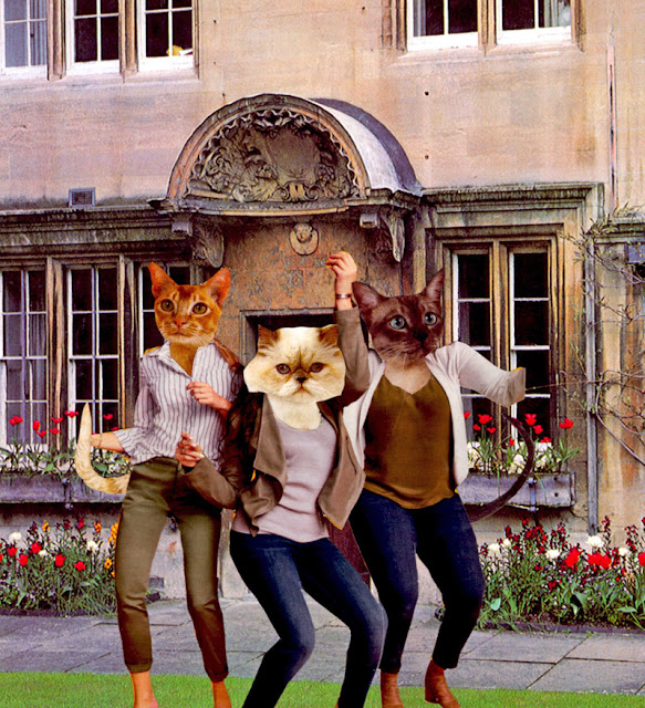 Oxford Cats altered book collages by Claudia MB