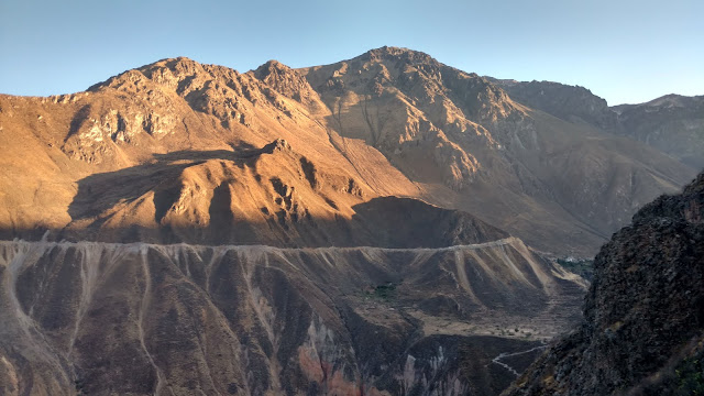 the Colca Canyon in the early AM