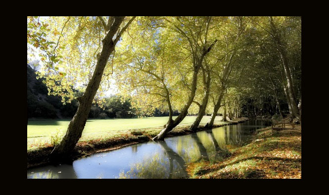 L'Eure en automne Uzès, France by André Becker as seen on linenandlavender.net