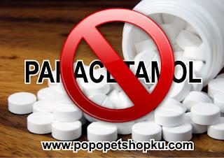 paracetamol tidak boleh untuk kucing