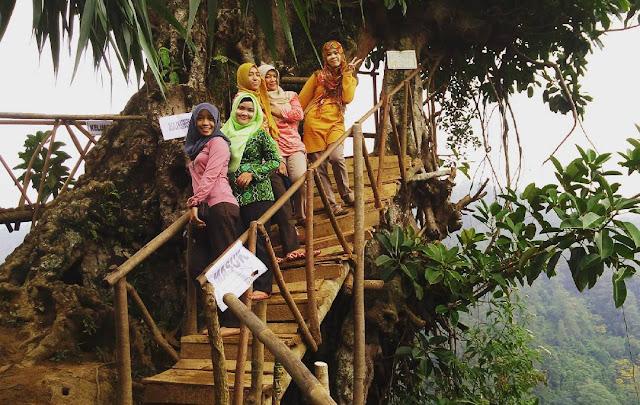 Foto Grufie di Rumah Pohon desa Tombo
