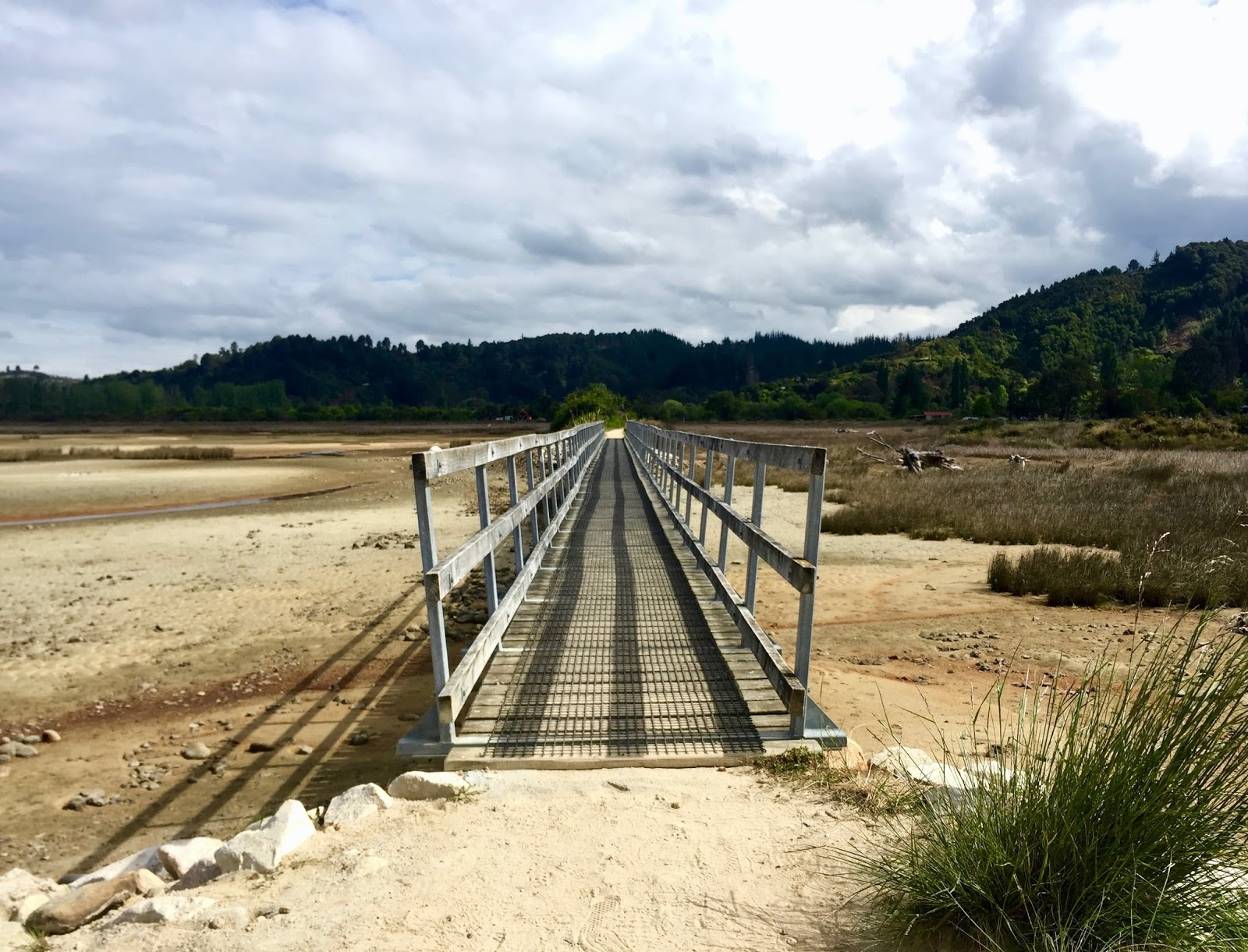 Bridge on Abel Tasman Coastal Track, best walks in New Zealand