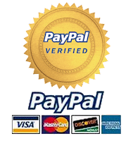 adding online payment processing to your website.