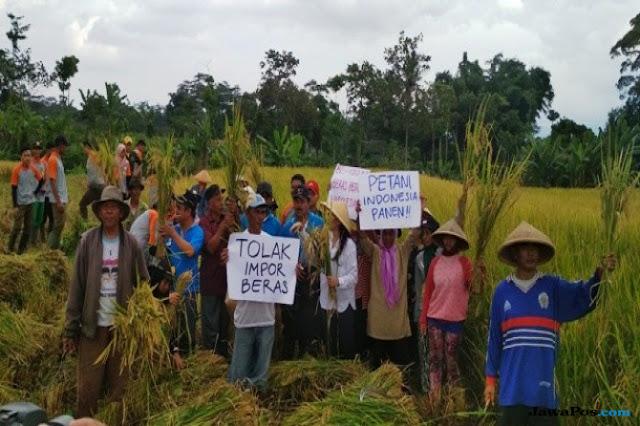 Demokrat: Jangan Jadikan Petani Korban Kebijakan Impor Beras