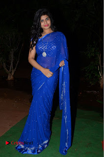 Actress Alekhya Pictures in Blue Saree at Happy Birthday Audio Launch  0105