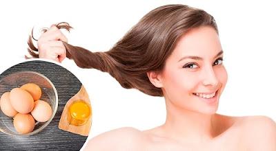 masques aux œufs pour les cheveux abîmés