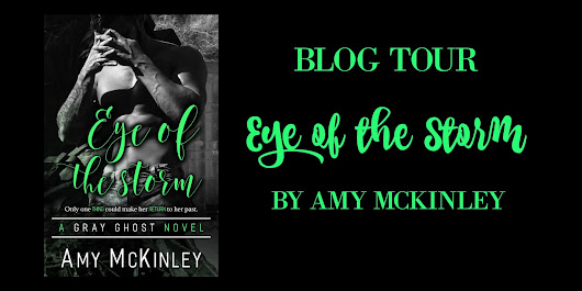 Tour Stop: Eye of the Storm by Amy McKinley
