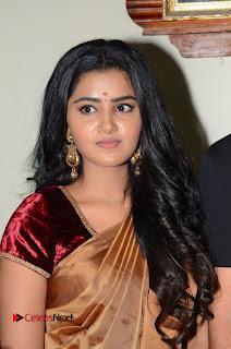 Actress Anupama Parameswaran Stills in Silk Saree with Shatamanam Bhavati Team at Sandhya Theater  0017.JPG