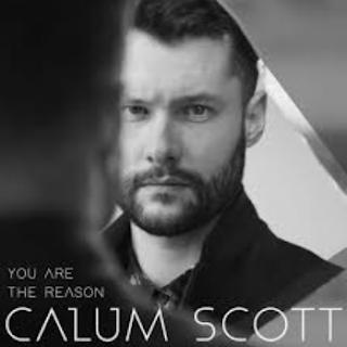 Calum Scott You Are The Reason Mp3