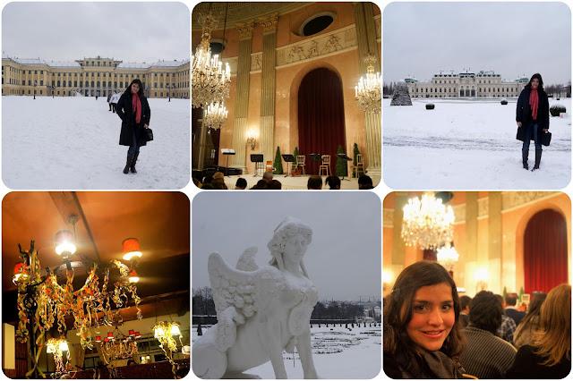 Viena / Áustria / Concerto / Palácio Belvedere