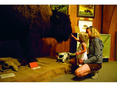 National Buffalo Museum in North Dakota