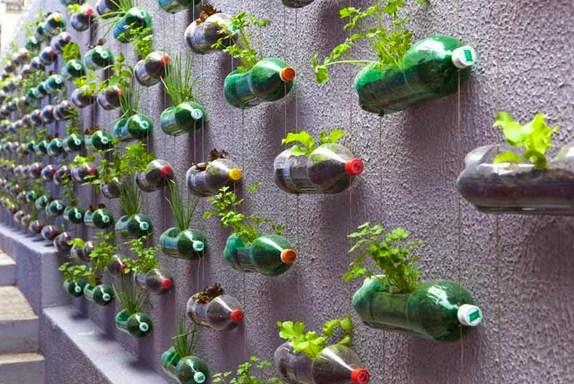 Cara Membuat Dekorasi Taman Gantung untuk Rumah Minimalis