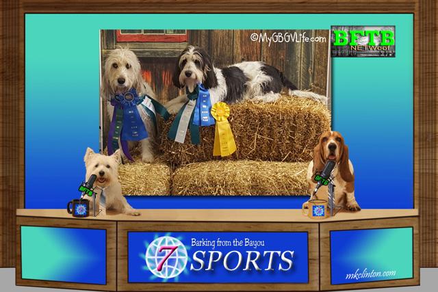 BFTB NETWoof Sports reports on GBGV dog barn hunt titles