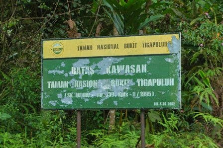 Taman Nasional Bukit Tiga Puluh