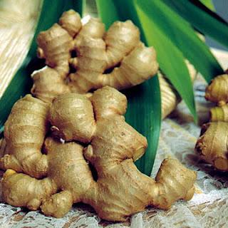 Jahe  ialah salah satu komponen tumbuhan herbal yg terkenal dipakai di  Indonesia Mengurai Kandungan Jahe