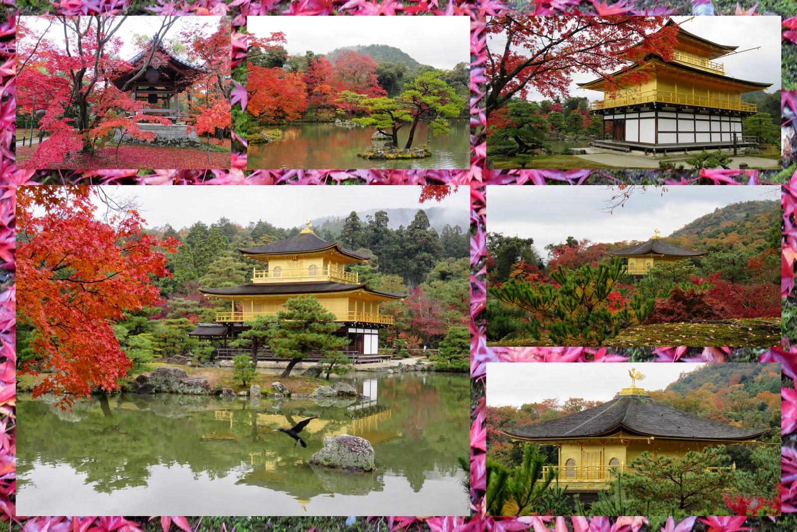 Kinkaku-ji Golden Pavilion in Kyoto
