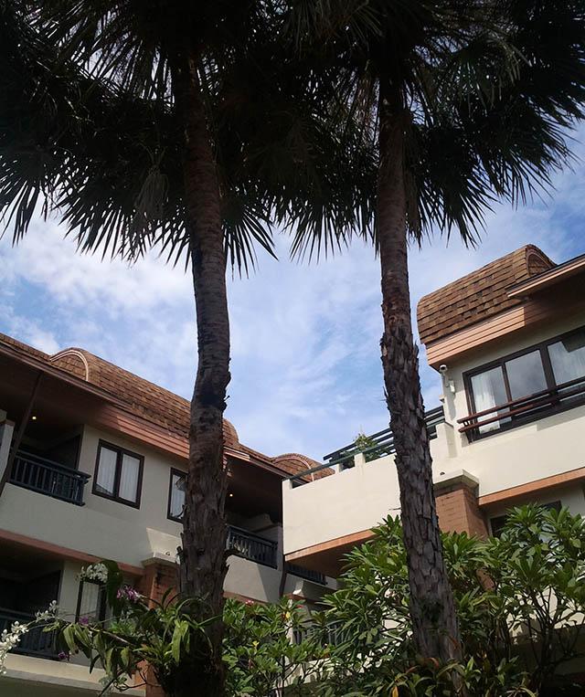 Phi Phi Island Cabana Hotel: PP Palmtree Resort, Phi Phi Island, Thailand