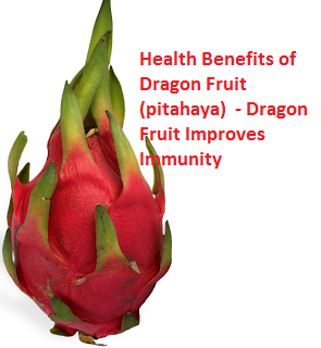 Health Benefits of Dragon Fruit (pitahaya)  - Dragon Fruit Improves Immunity