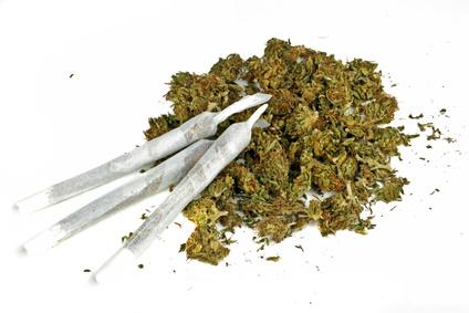 überdosis Gras
