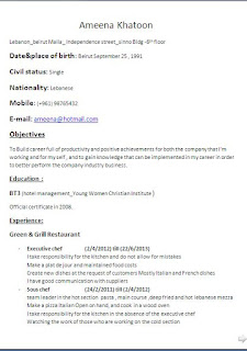 executive chef resume sample format in word free download