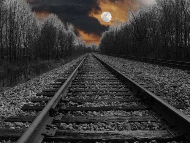 """Como el periquito """"por poquito"""" muere aplastado por el tren"""