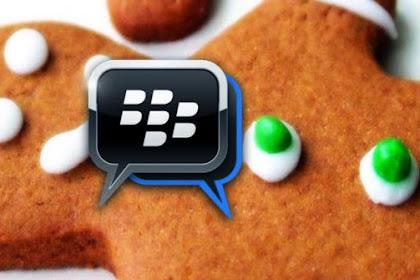 BBM Akan Bisa Digunakan di Android Gingerbread
