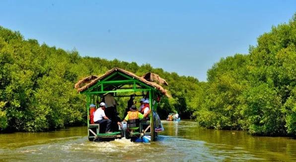wisata Hutan Mangrove Karangsong Indramayu