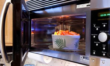 Panduan Memasak dengan Microwave