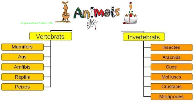 http://www.xtec.cat/~gmedina/animals/animals.htm