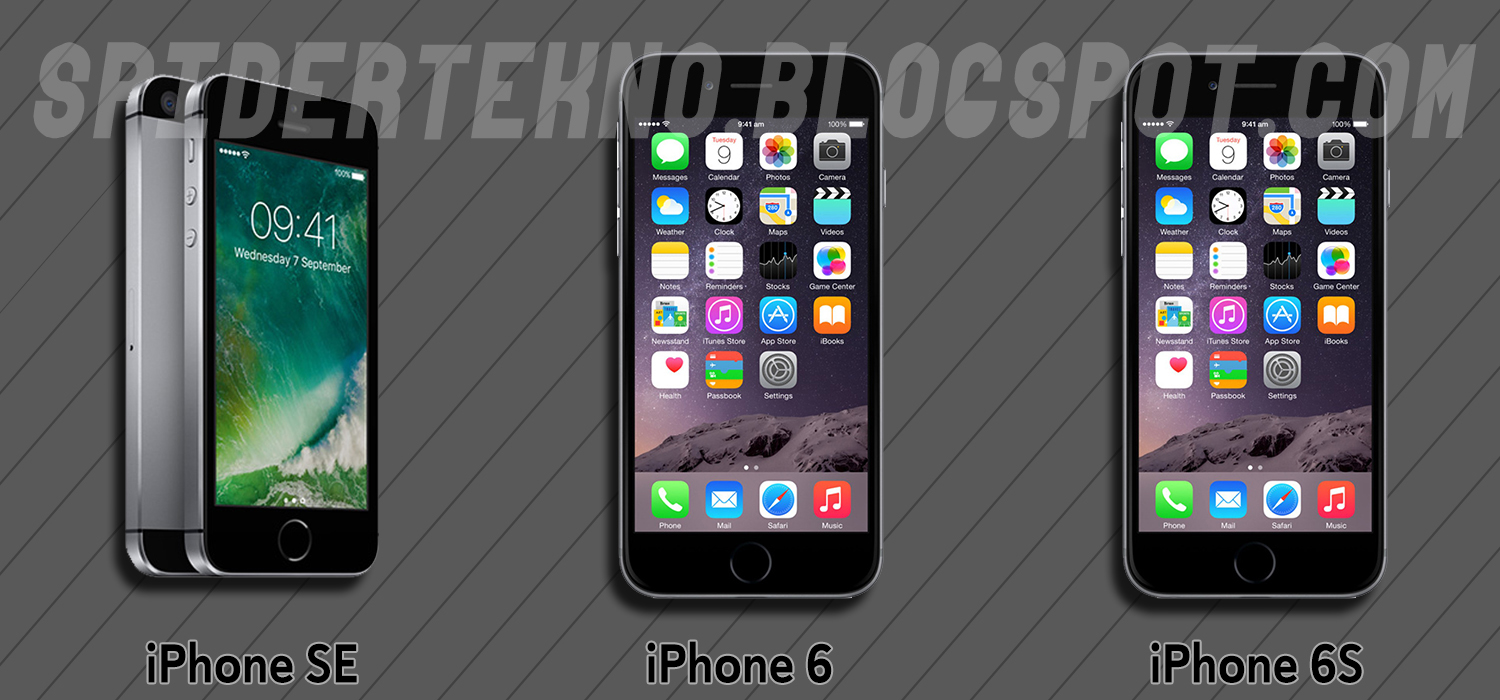 Iphone 6 E >> Perbedaan Iphone 6 Iphone Se Dan Iphone 6s Spider Tekno