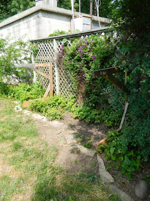 Dovercourt Park Backyard Garden Cleanup After by Paul Jung Gardening Services--a Toronto Gardening Company