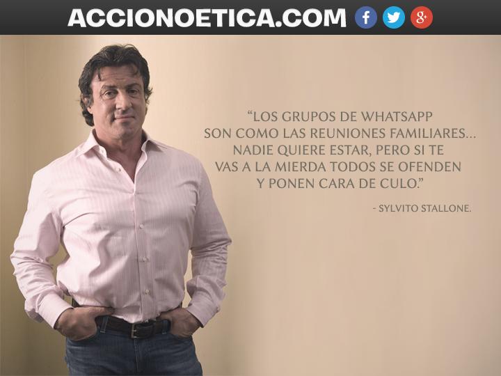 Stallonewhatsapp Y La Familia Acción Noética