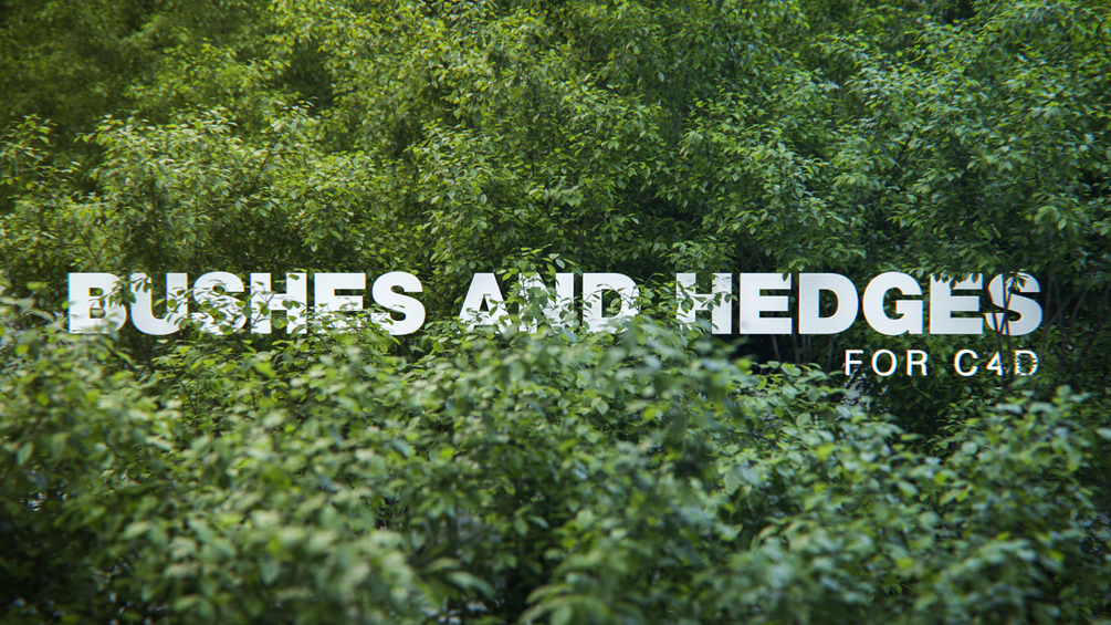 Bush & Hedge models for Cinema 4D | Computer Graphics Daily News
