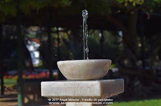 Fuente ornametal, jardines, jardinería, jardines públicos