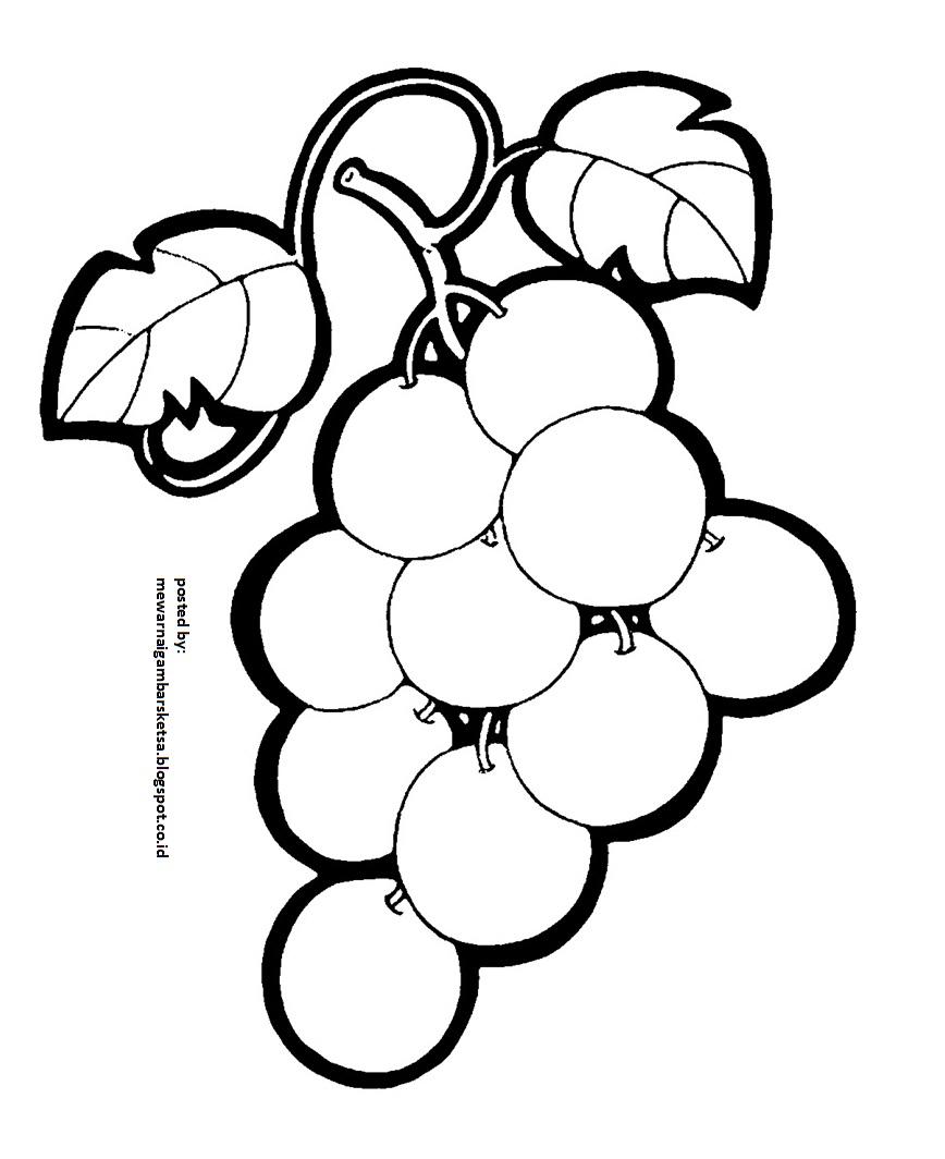 Mewarnai Gambar Mewarnai Gambar Sketsa Buah Anggur 1