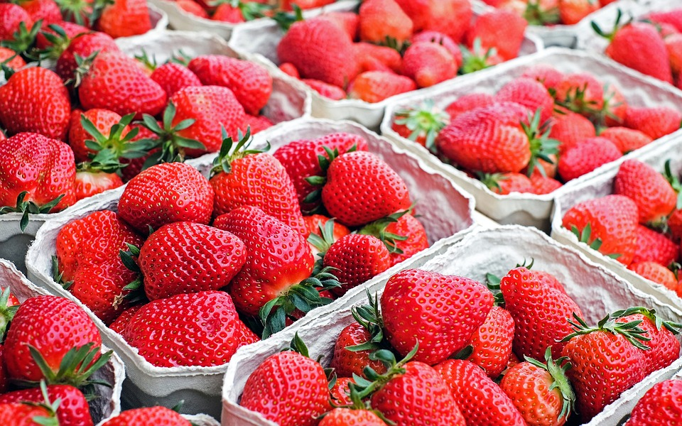 Frozen Berry Slice: Easy Dessert Ideas.