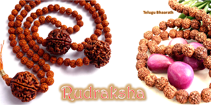 How to know about Genuine Rudraksha Beads